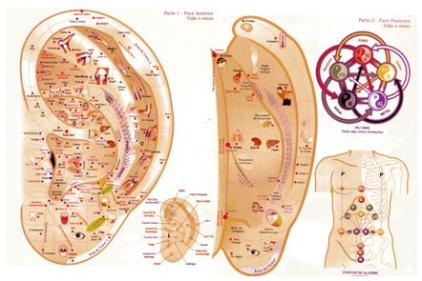 Mapa Auriculo